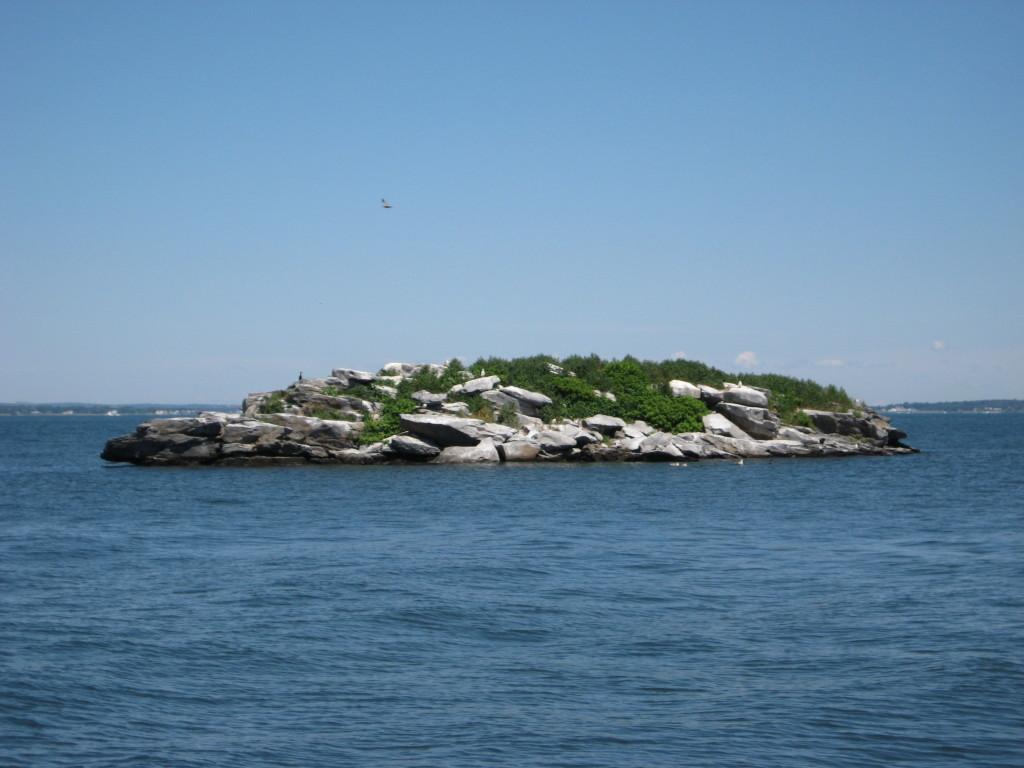 A potential future IOTA - Goosberry Island